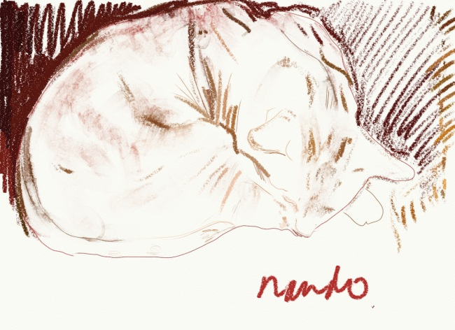 Click image to go to the Nando image on the Thousand Sketches site