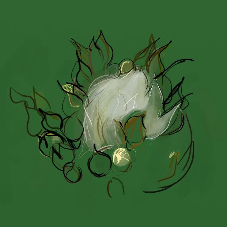 0913_thornless_rose_w