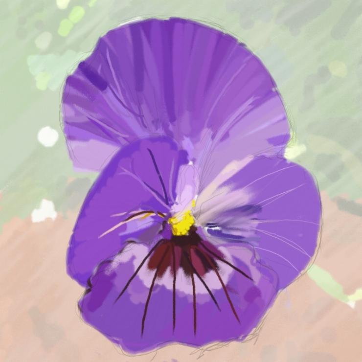 0909_violet_w