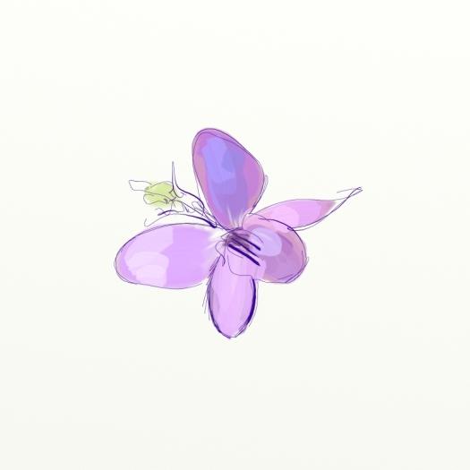 0912_little_violet2_w